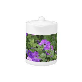 Lila Blumen-Frühlings-Garten-Thema-Petunie mit