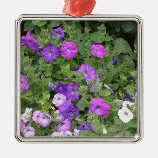 Lila Blumen-Frühlings-Garten-Thema-Petunie mit Silbernes Ornament