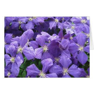 Lila Blüte Karte