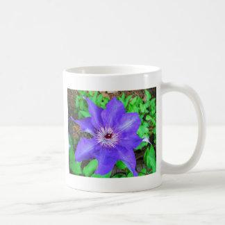 Lila Clematis-Blume Kaffeetasse
