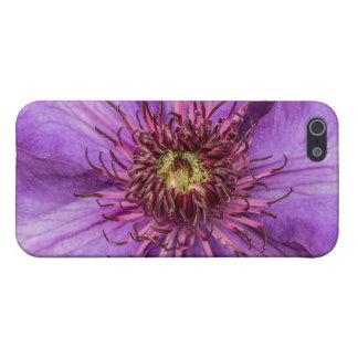 Lila Clematis-Blume Schutzhülle Fürs iPhone 5