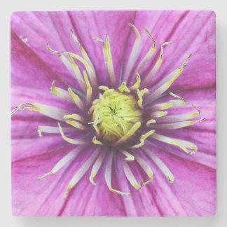 Lila Clematis-Blumenblüte Steinuntersetzer