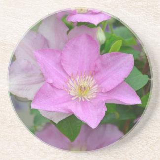 Lila Clematis-Blumenblüten Getränkeuntersetzer