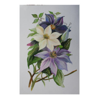Lila Clematis Poster