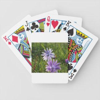 Lila Gänseblümchen-Blumen auf grünem Hintergrund Bicycle Spielkarten
