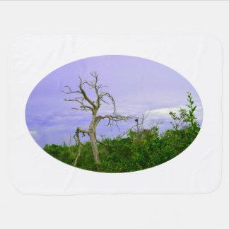lila Grün des toten Baums verlässt Puckdecke