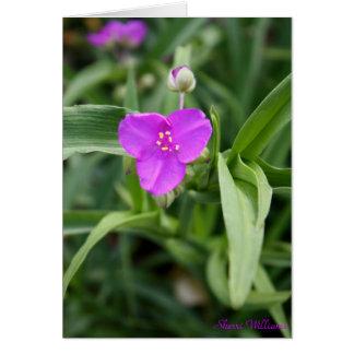 Lila in der Blüte Karte