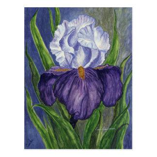 Lila Iris-mini sammelbare Drucke Postkarte