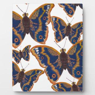 Lila Kaiser-Schmetterlinge Fotoplatte