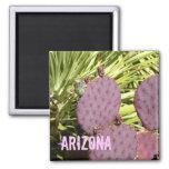 Lila Kaktus Arizona-Magnet Kühlschrankmagnet