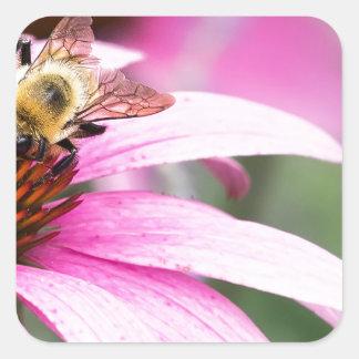 Lila Kegel-Blume mit Biene Quadratischer Aufkleber