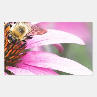 Lila Kegel-Blume mit Biene Rechteckiger Aufkleber