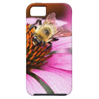 Lila Kegel-Blume mit Biene Schutzhülle Fürs iPhone 5