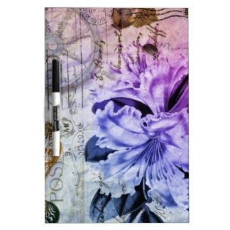 lila Küstenlilie der französischen botanischen Trockenlöschtafel