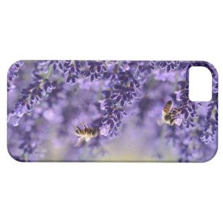 Lila Lavendel und Bienen iPhone Fall iPhone 5 Schutzhülle