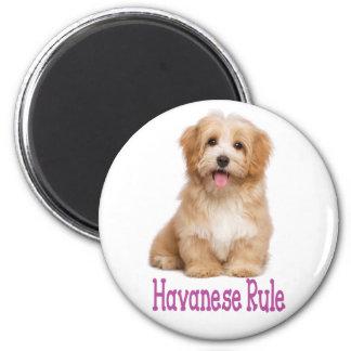 Lila Liebe Havanese TAN und weißer Welpen-Hund Runder Magnet 5,7 Cm