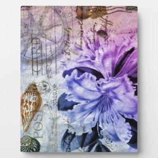 lila Lilie des französischen botanischen Fotoplatte