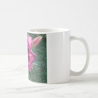 Lila Lilien-Blume Kaffeetasse