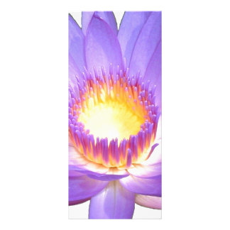 Lila Lotos-Blumen-Gestell-Karte Werbekarte