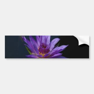 Lila Lotos-Wasserlilie Autoaufkleber