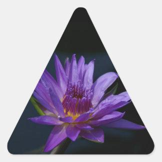 Lila Lotos-Wasserlilie Dreieckiger Aufkleber