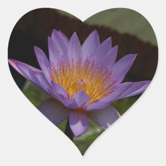 Lila Lotos-Wasserlilie Herz-Aufkleber