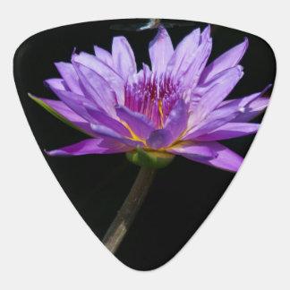 Lila Lotos-Wasserlilie-Libellen-Plektrum Plektrum