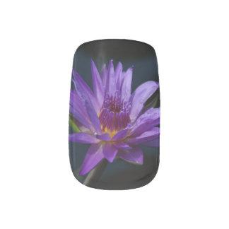 Lila Lotos-Wasserlilie Minx Nagelkunst