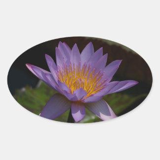 Lila Lotos-Wasserlilie Ovaler Aufkleber