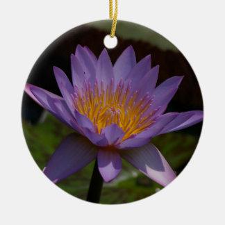 Lila Lotos-Wasserlilie Rundes Keramik Ornament