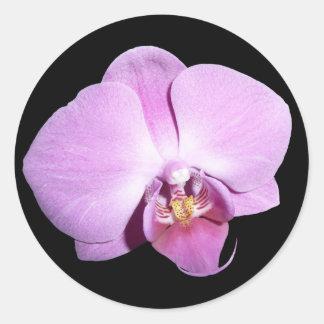 Lila Orchidee Runder Aufkleber