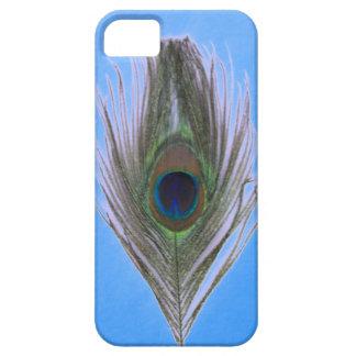 Lila Pfau-Feder auf Blau Etui Fürs iPhone 5