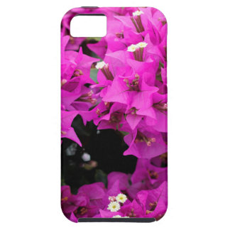 Lila pinkfarbener Bouganvilla-Hintergrund Etui Fürs iPhone 5
