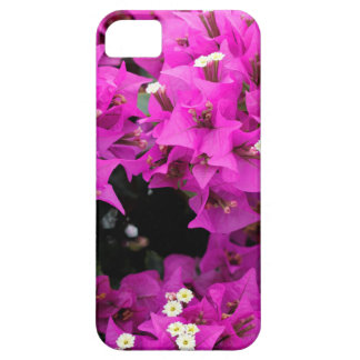 Lila pinkfarbener Bouganvilla-Hintergrund iPhone 5 Etui