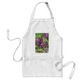Lila riesige Ironweed-Wildblume-Knospen Schürze