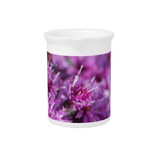 Lila riesige Ironweed-Wildblumen Getränke Pitcher