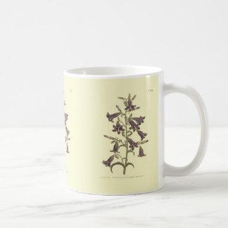 Lila sibirische Glockenblumen-Illustration Kaffeetasse