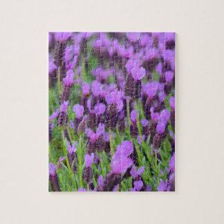 Lila spanische Lavendel-Blume Puzzle