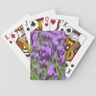 Lila spanische Lavendel-Blume Spielkarten