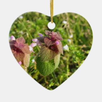 Lila Tot-Nessel (Lamium purpureum) auf Grün Keramik Herz-Ornament