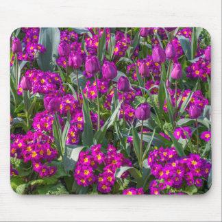 Lila Tulpen und Primeln mousepad