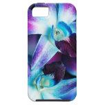 Lila u. blaue Dendrobium-Orchidee kundengebundene  iPhone 5 Schutzhüllen
