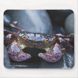Lila Ufer-Krabbe Mousepad
