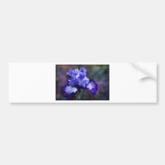 Lila und blaue hohe Schwertlilie-Blüte Autosticker