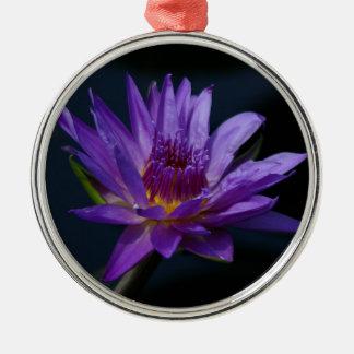 Lila und gelbe Lotos-Wasserlilie-Blume Silbernes Ornament