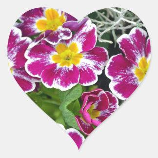 Lila und gelbe Primel-Blumen Herz-Aufkleber