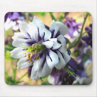 Lila und weiße Columbine-Garten-Blume Mousepad