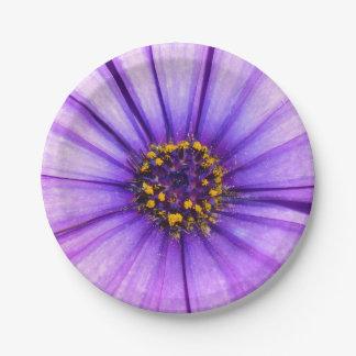 Lila violettes Gänseblümchen-Blumen-Makro Pappteller