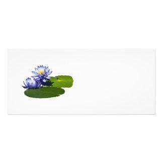 Lila Wasser-Lilien im Sonnenschein Werbekarte