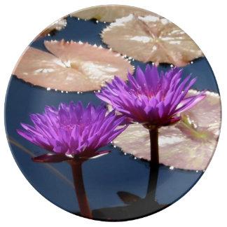 Lila Wasser-Lilien Porzellanteller